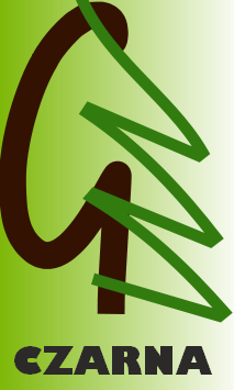 logo gimnazjum podkarpackie